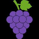 1455752805_grapes-purple